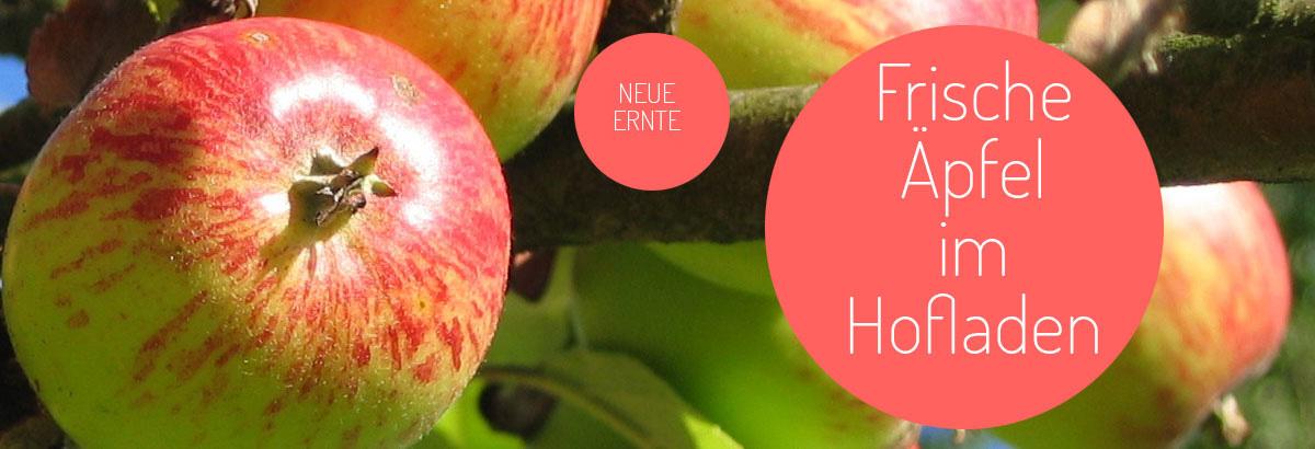 gaetschenberger-aepfel-neue-ernte