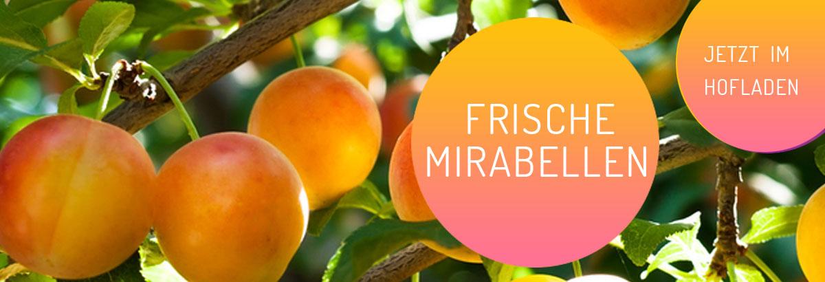 mirabellen-header