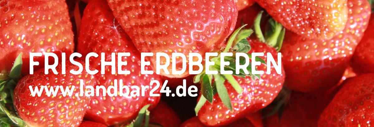 header-gaetschenberger-erdbeeren
